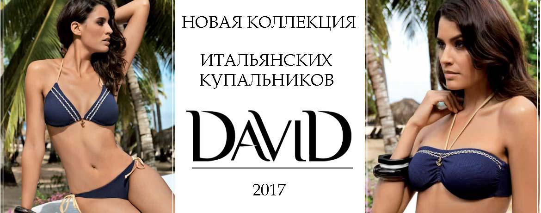 rev-slider-david-2017
